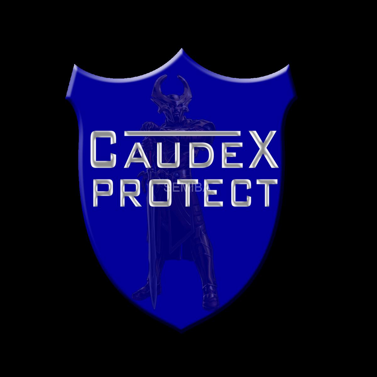 Titelbild der Leitstellensoftware Caudex Protect